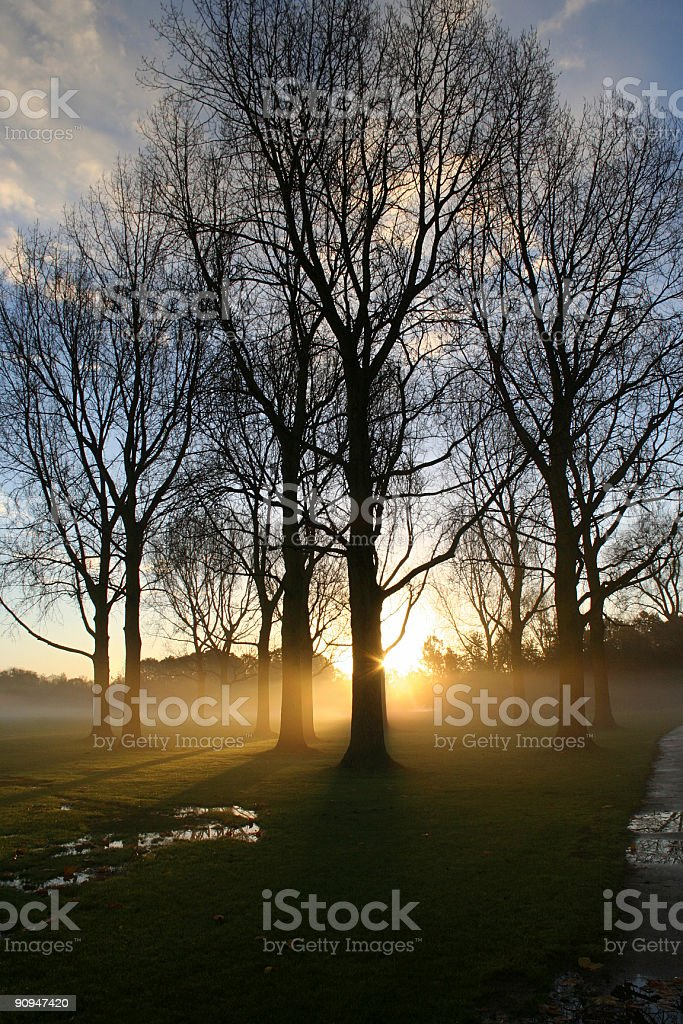Sunrise in the Park stock photo
