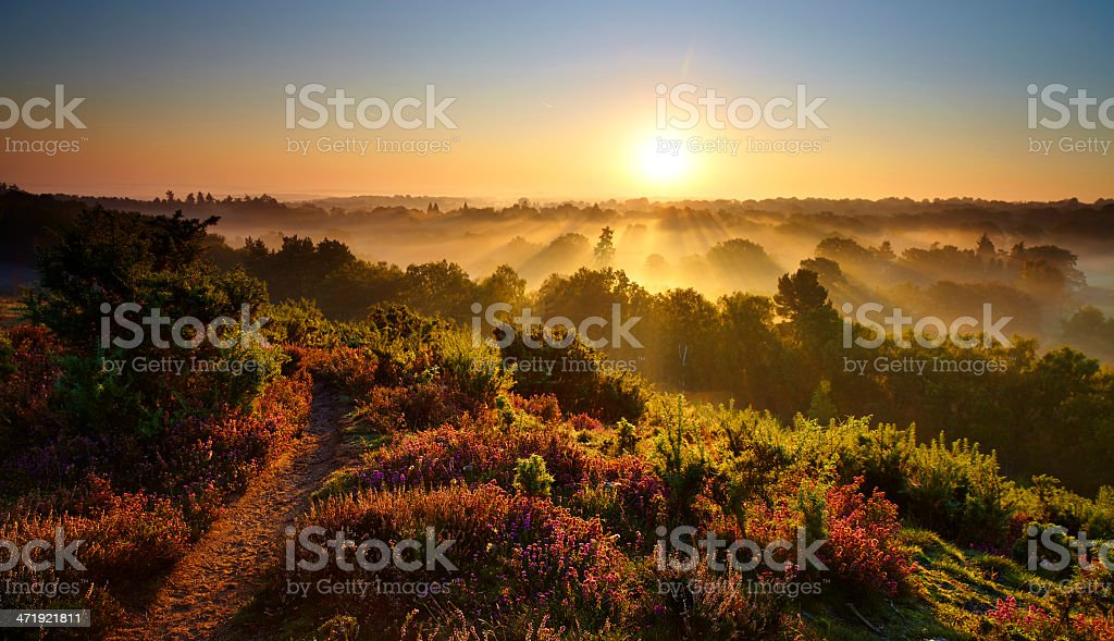 Sunrise In The Surrey Hills stock photo