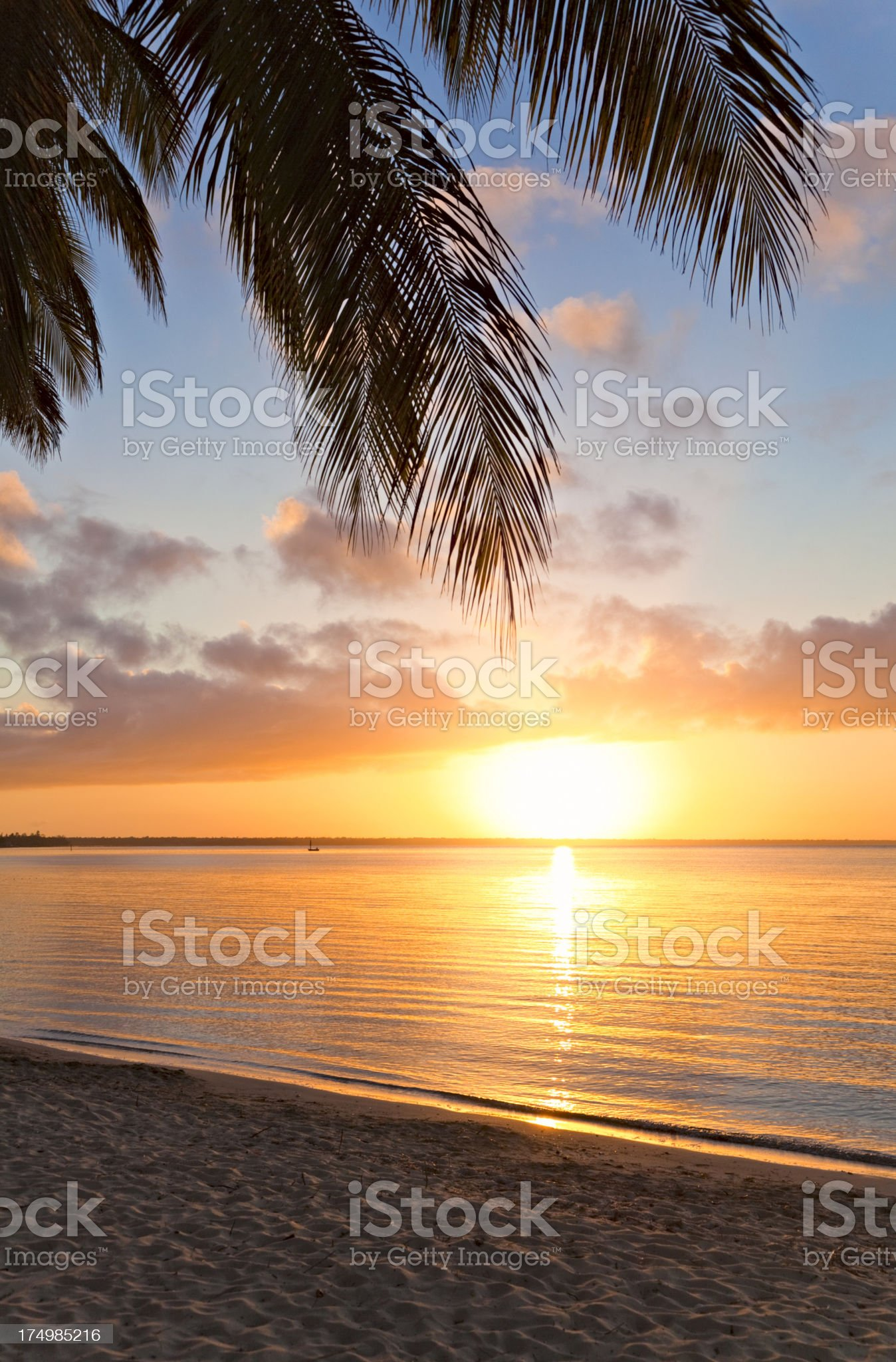 Sunrise in the tropics royalty-free stock photo