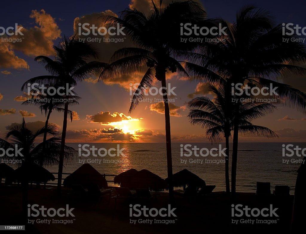 Sunrise in tropic royalty-free stock photo