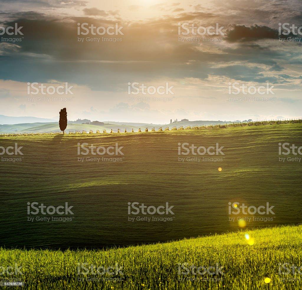 Sunrise in Tuscany stock photo