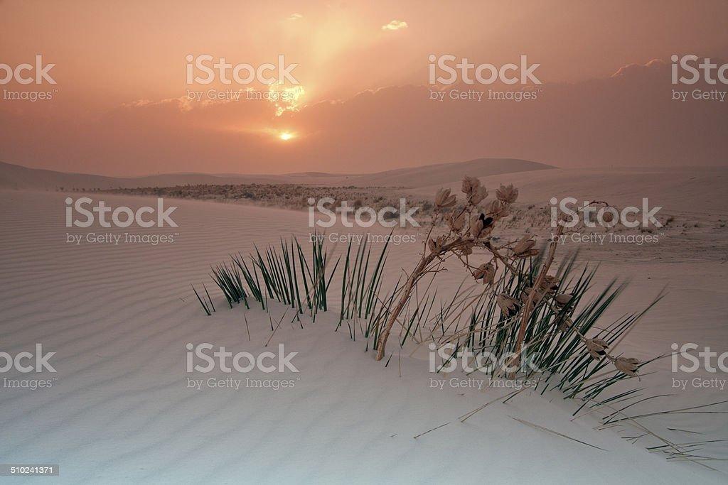 Sunrise in White Dunes National Monument stock photo