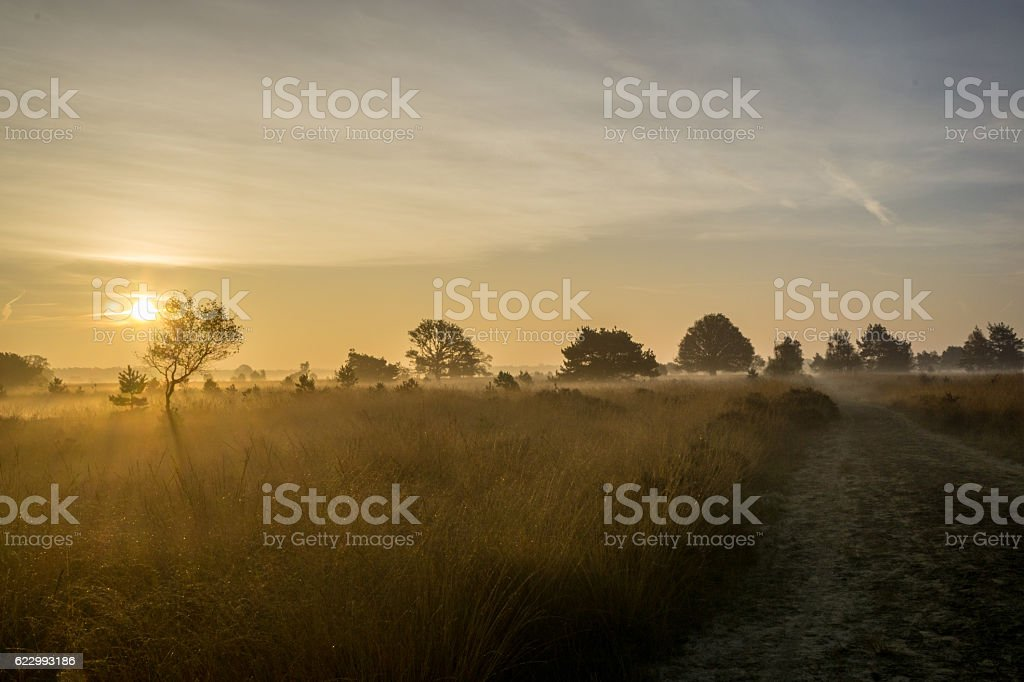 Sunrise Moorland stock photo