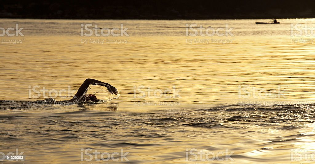 Sunrise ocean swim at Balmoral, Sydney stock photo