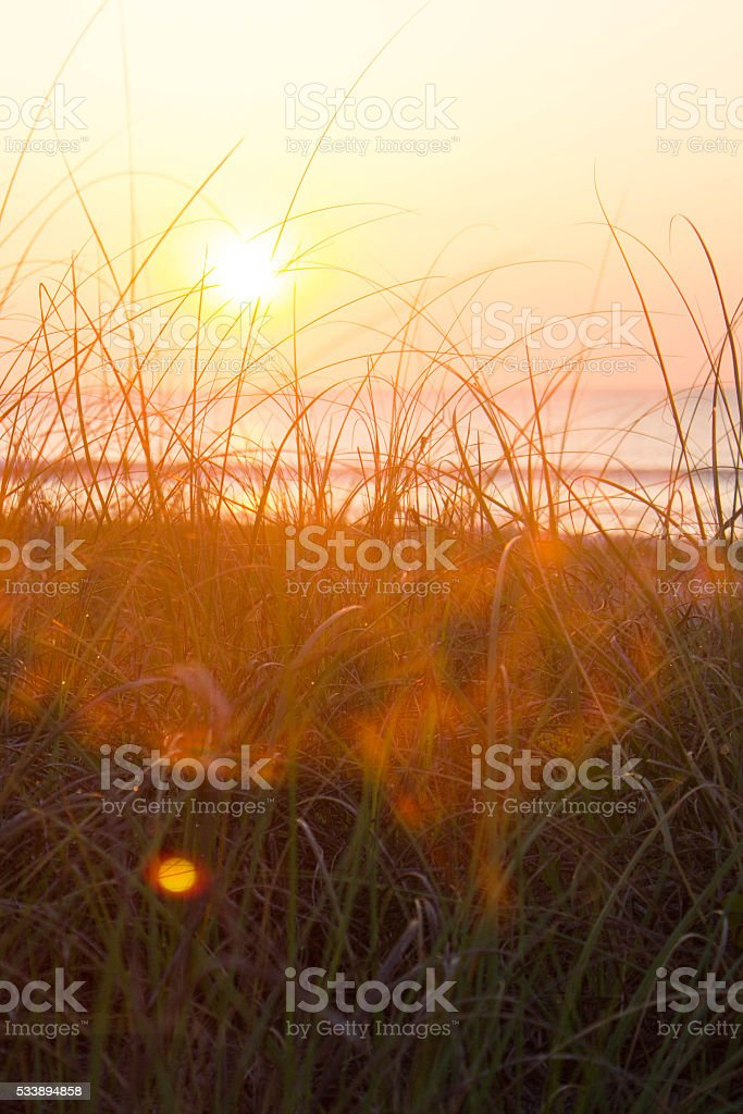 Sunrise on Amelia Island stock photo