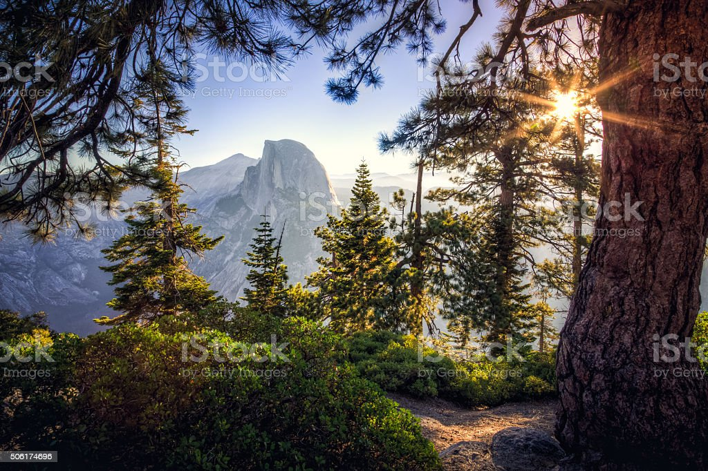 Sunrise on Half Dome in the Forest stock photo