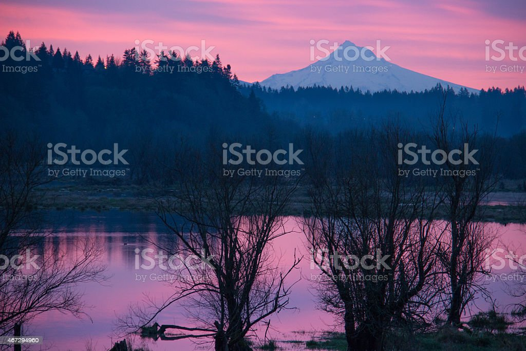 Sunrise on Salmon Creek with Mount Hood in the Distance stock photo