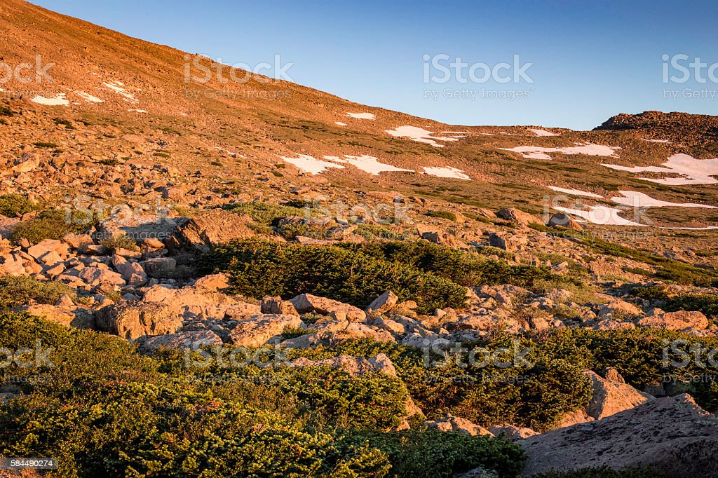 Sunrise on the Alpine Tundra, Rocky Mountain National Park, Colorado. stock photo