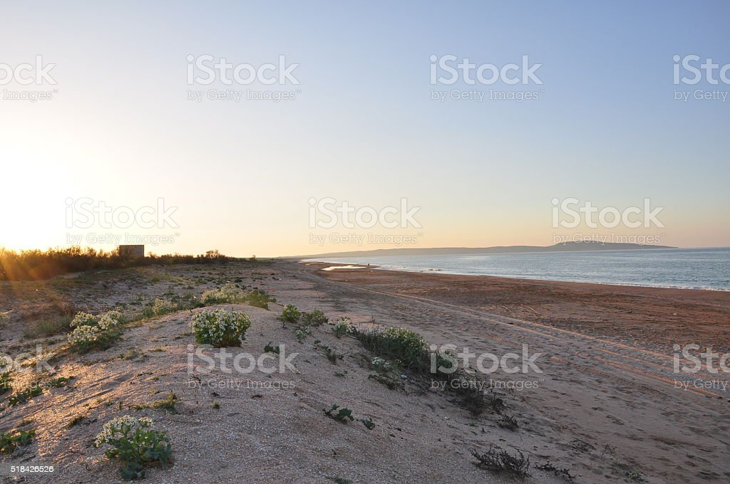 Amanecer en la playa foto de stock libre de derechos