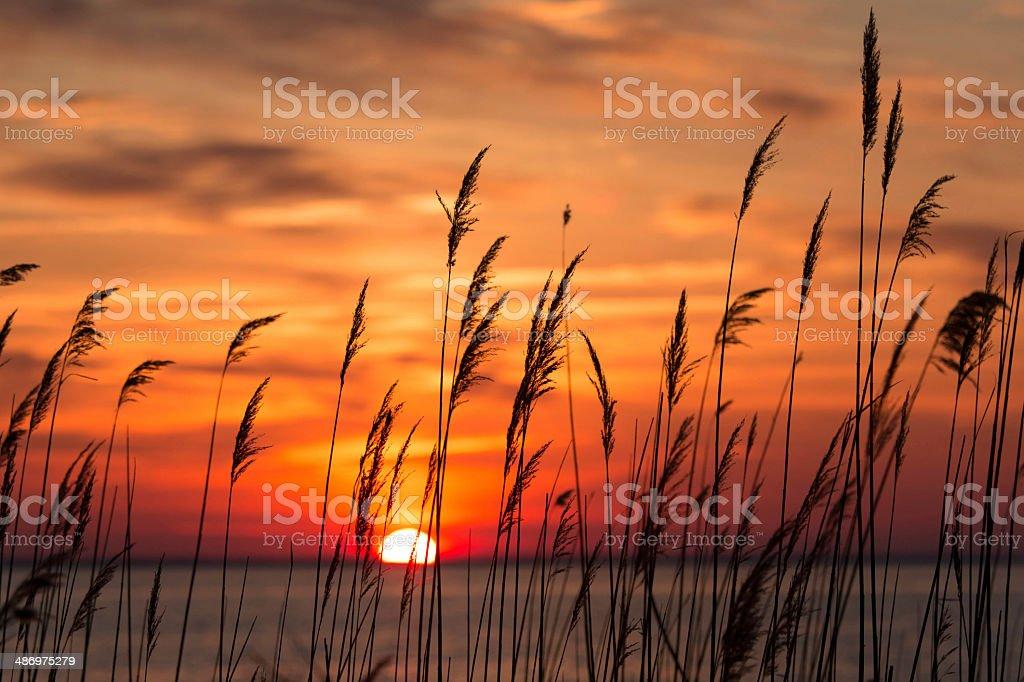 Sunrise on the Chesapeake Bay stock photo