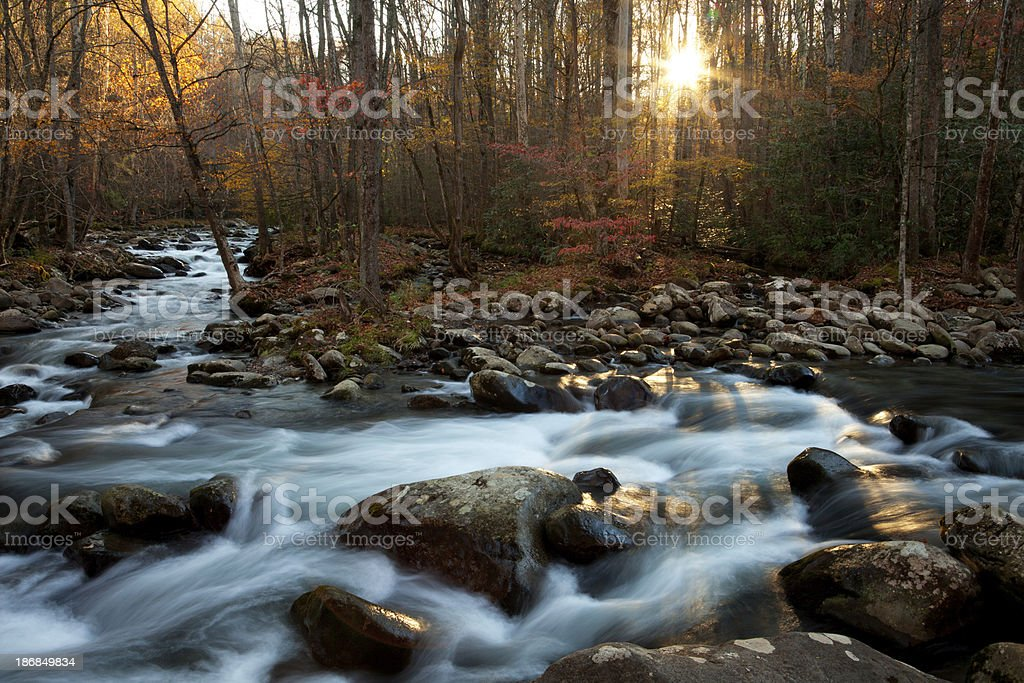 Sunrise on the Little Pigeon River royalty-free stock photo
