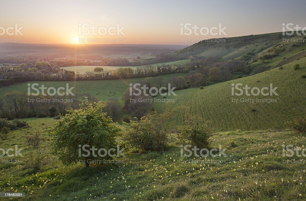Sunrise on the South Downs stock photo