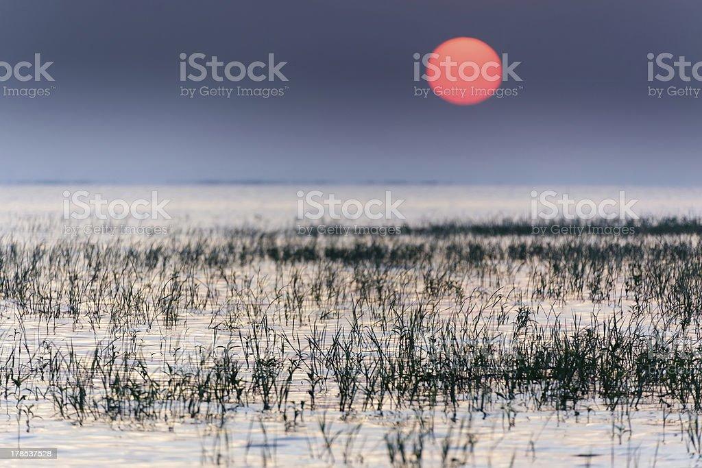 Sunrise on tropical lake royalty-free stock photo