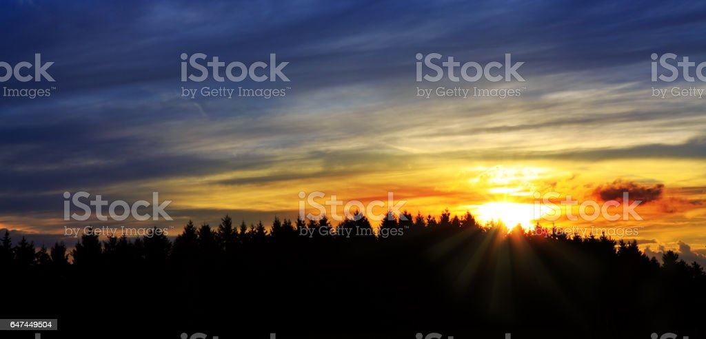 Sunrise over black forest mist stock photo
