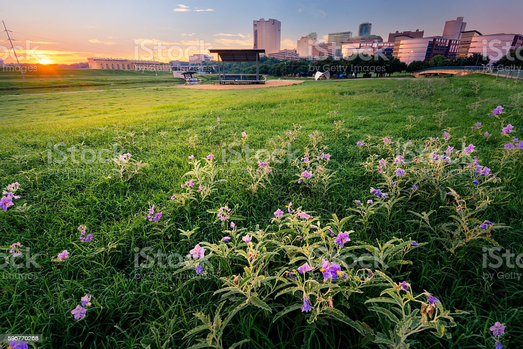 Sunrise Over Downtown Fort Worth stock photo
