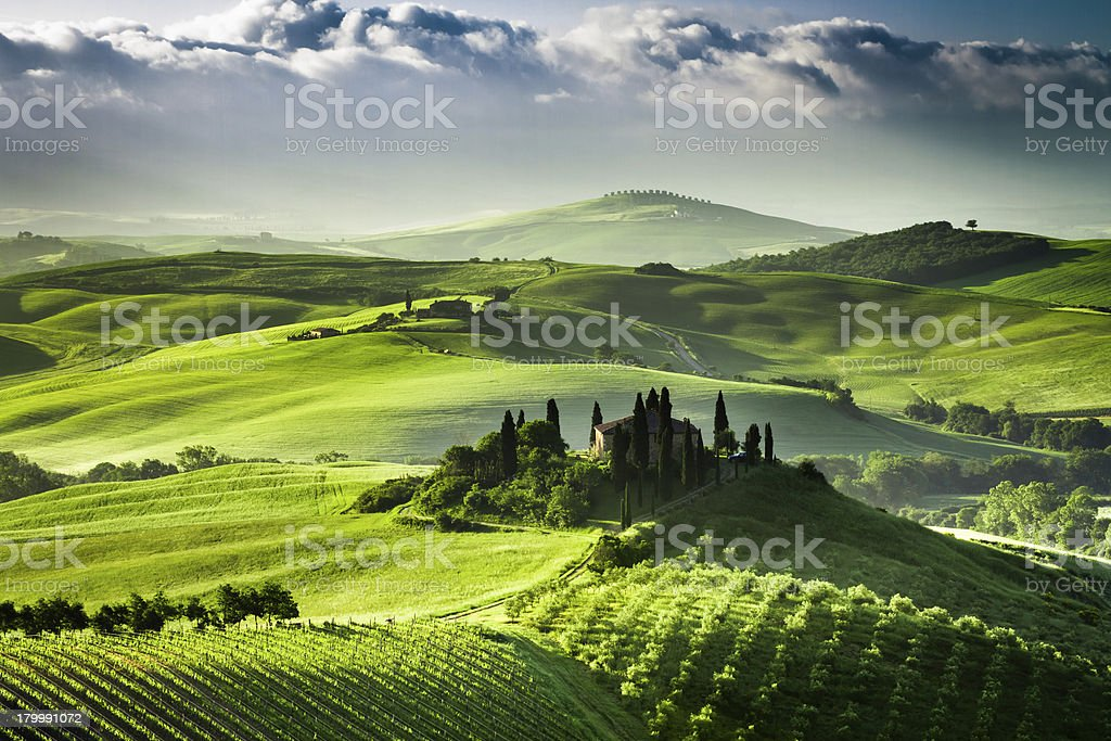 Sunrise over farm of olive groves and vineyards in  Tuscany stock photo