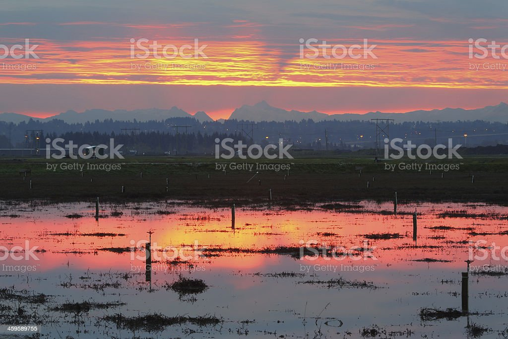 Sunrise over Flooded Cranberry Fields stock photo
