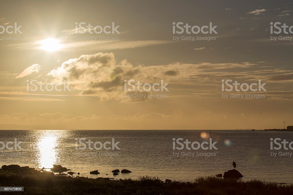 Sunrise over Heron's Head Park in San Francisco stock photo