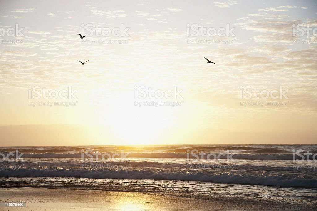 Sunrise over ocean stock photo