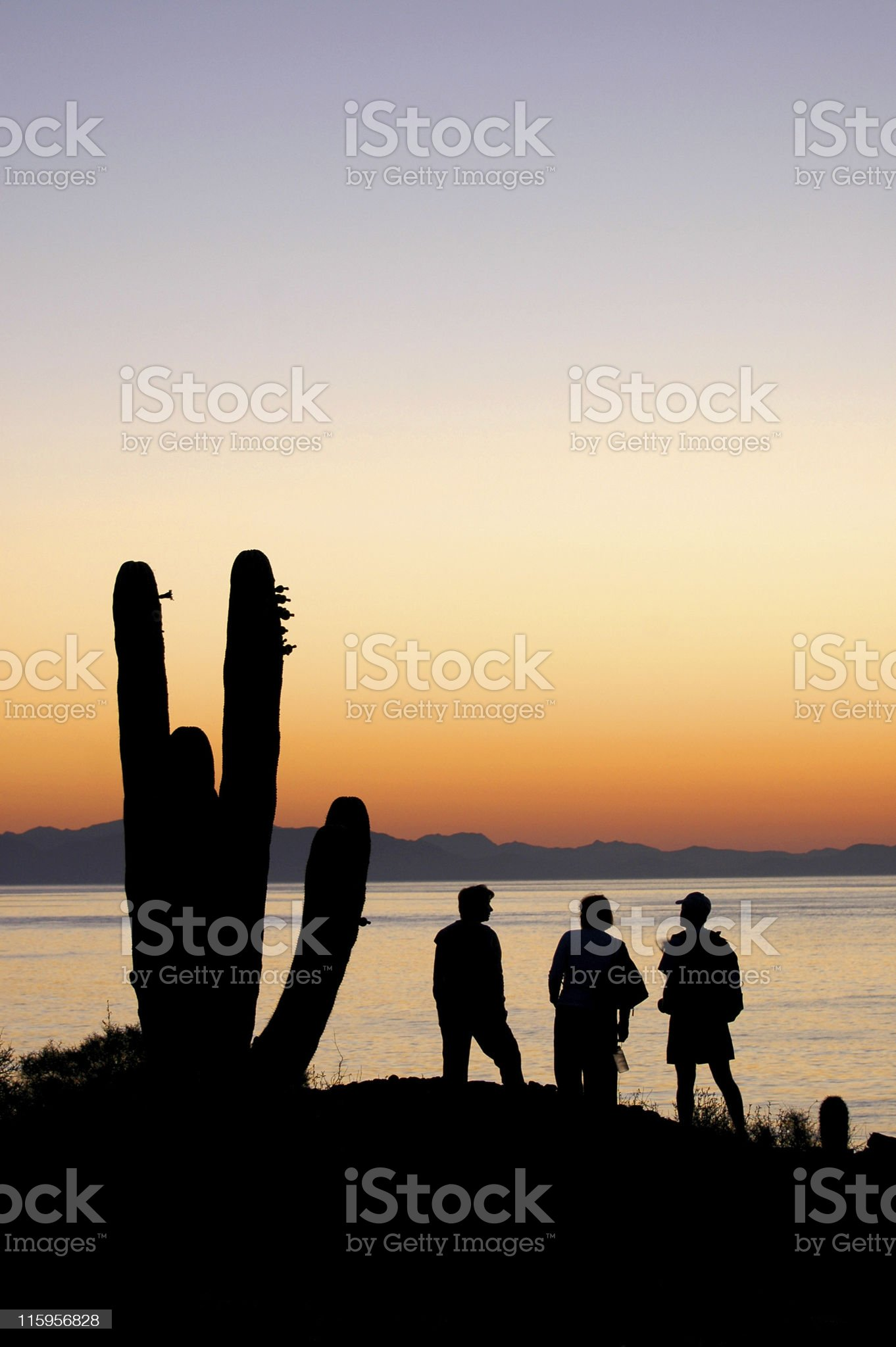 sunrise over Sea of Cortez silhouetting of cactus and people royalty-free stock photo