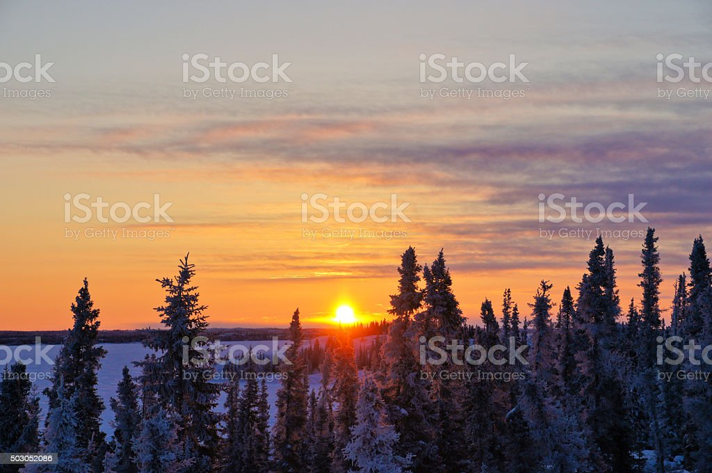 Sunrise Over Snow Covered Trees in Yellowknife stock photo