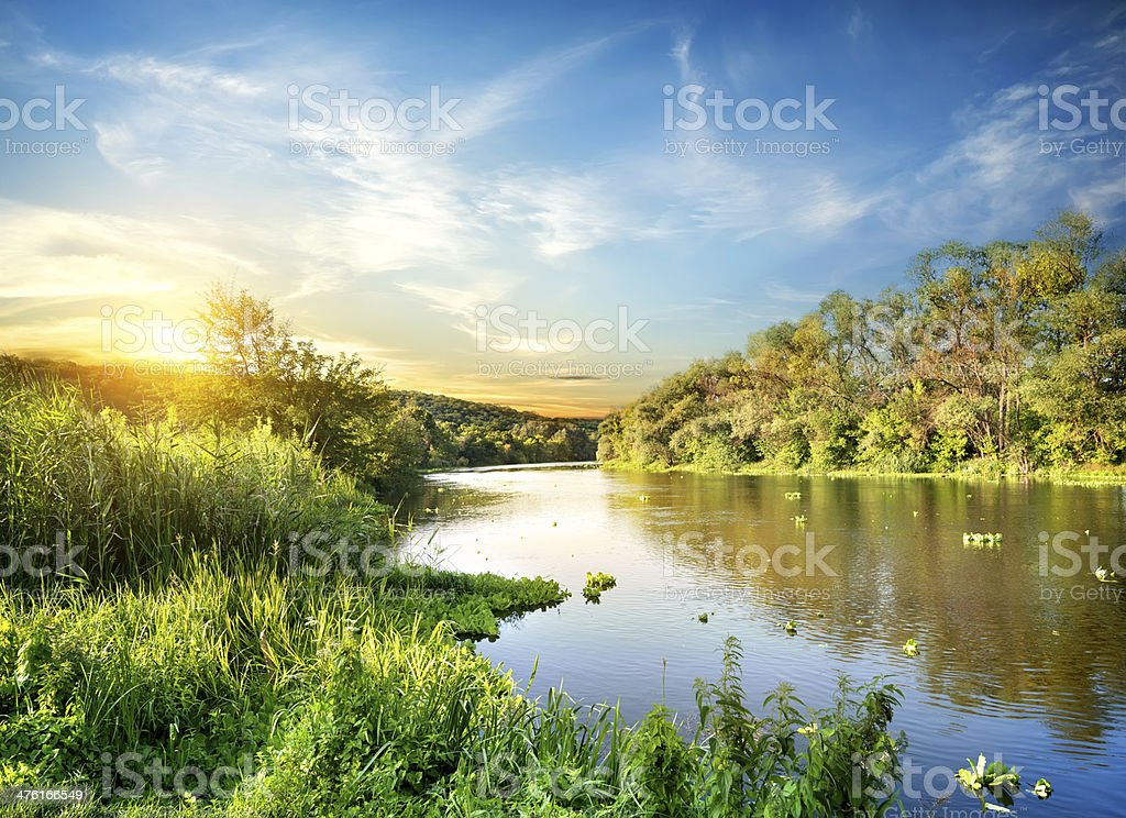 Sunrise over the forest river stock photo