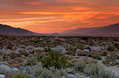 Sunrise Over The High Desert