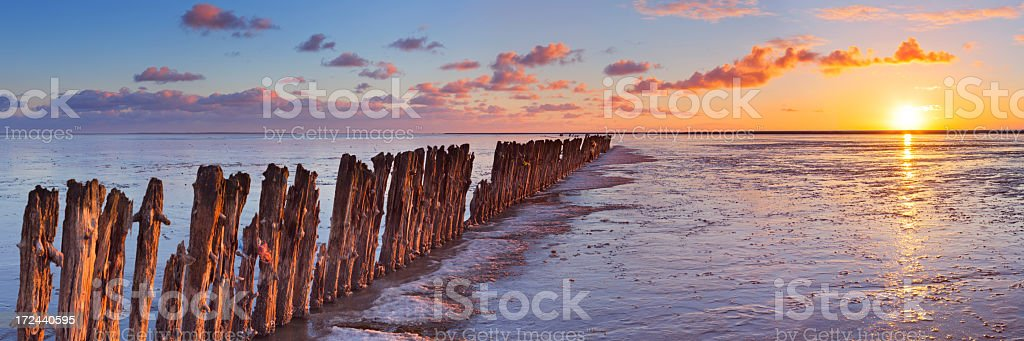 Sunrise over the Wadden Sea, Friesland, The Netherlands, low tide royalty-free stock photo