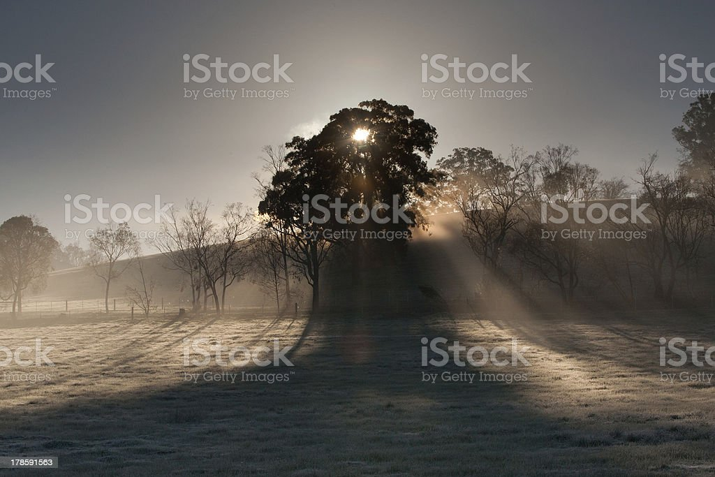 Sunrise over Yarra Valley In Winter royalty-free stock photo