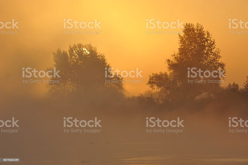 sunrise stock photo