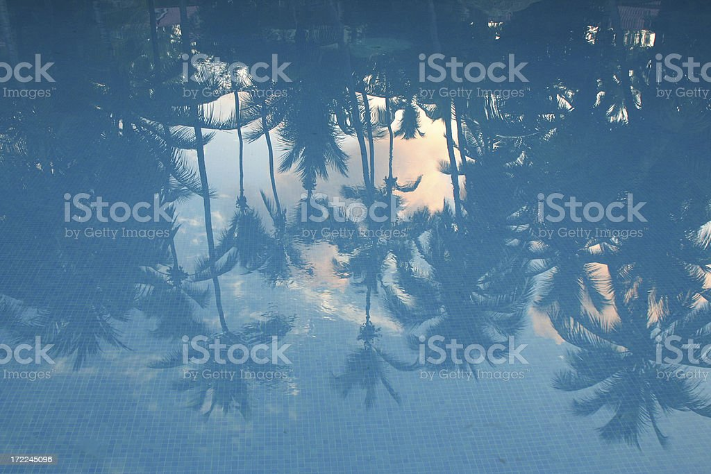 Sunrise reflection in the swimming pool stock photo
