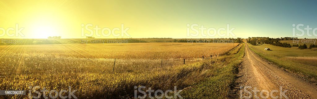 Sunrise Road.  Sun rising on South Dakota dirt road. stock photo