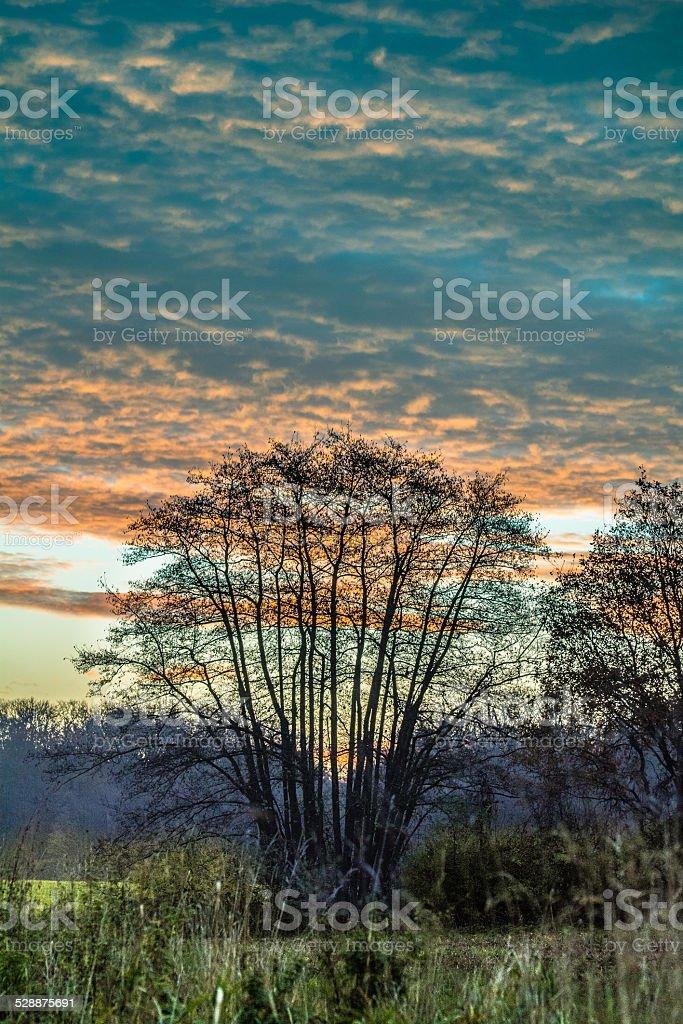 Sunrise special stock photo