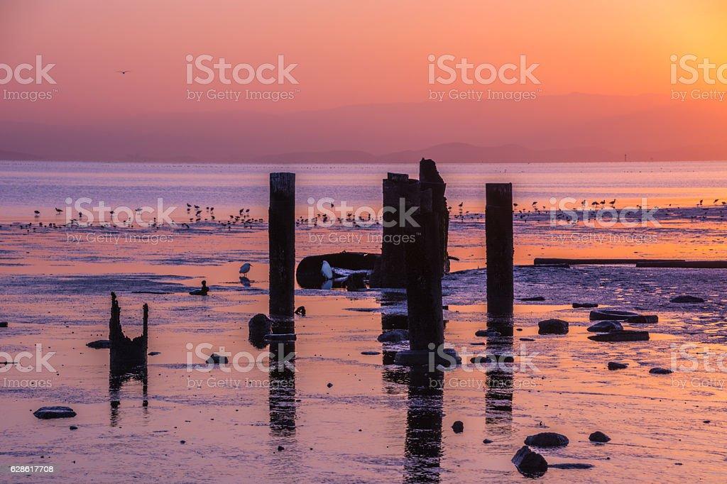 Sunrise Tidal Estuary Mudflats San Francisco Bay, California. stock photo