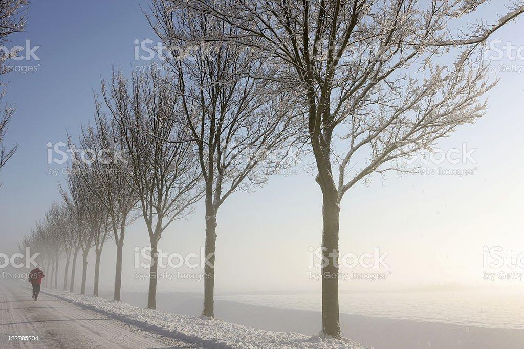 Sunrise Winter Jogging royalty-free stock photo