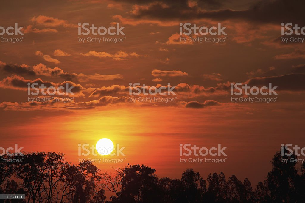 sunrise with dead trees at Thailand stock photo