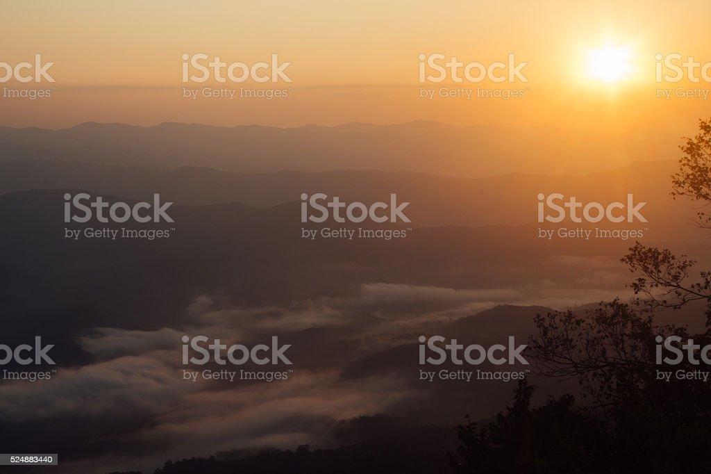 Восход солнца над горным лес с туман утром Стоковые фото Стоковая фотография