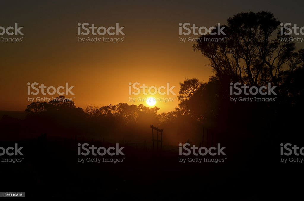 Sunrise with gumtrees and old sheep yard stations royalty-free stock photo