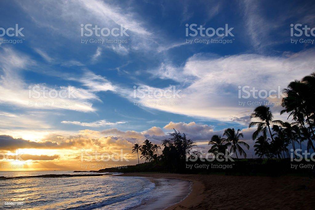 Sunrise with palm trees in Salt Pond Beach Park stock photo