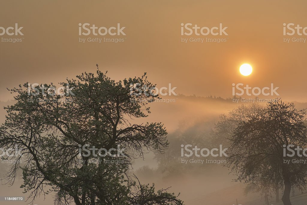 Sunrise with swathes of mist (HDR) stock photo