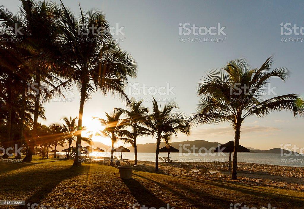 Sunrising at a Brazilian Tropical Beach stock photo