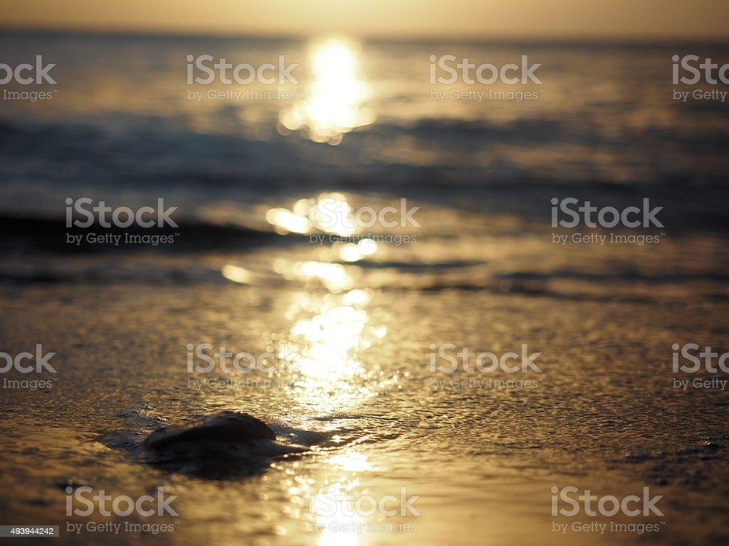 18 au coucher du soleil photo libre de droits