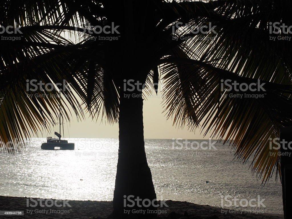 82 au coucher du soleil photo libre de droits