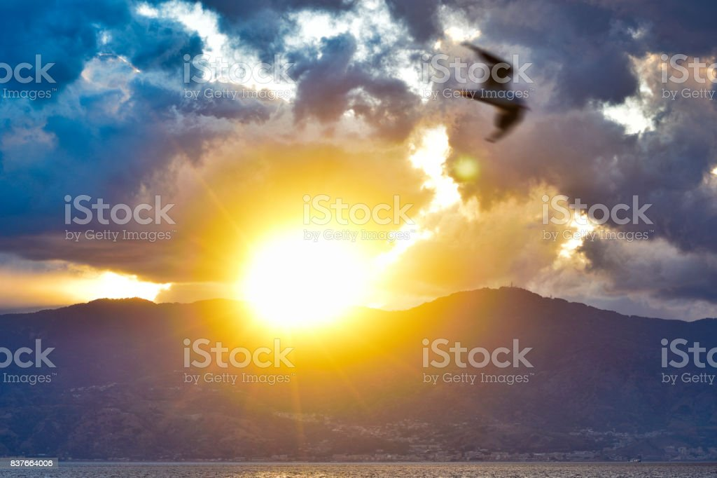 Sunset and clouds in the background, bird blur to the front. stock photo