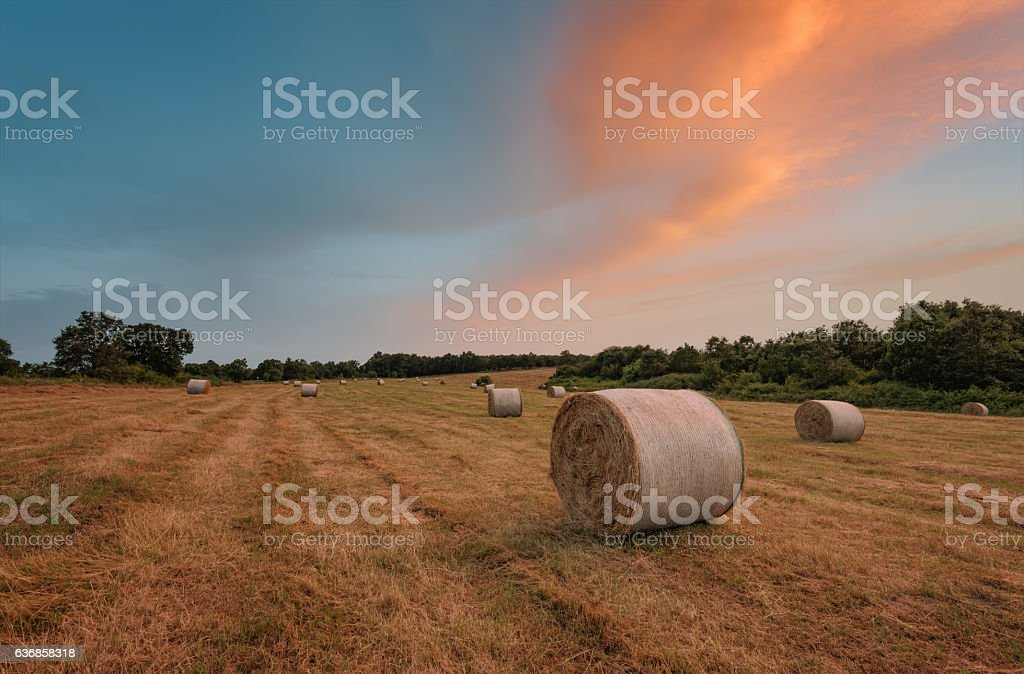 Sunset around bales of hay in the summer, Bulgaria stock photo