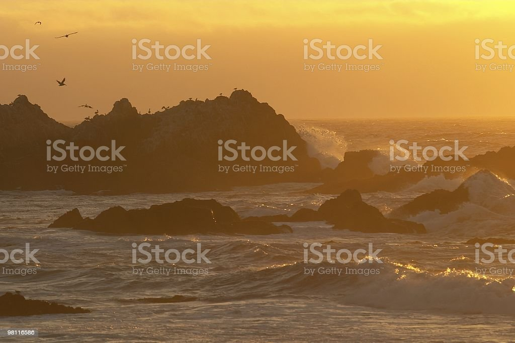 Sunset at 17 mile drive stock photo