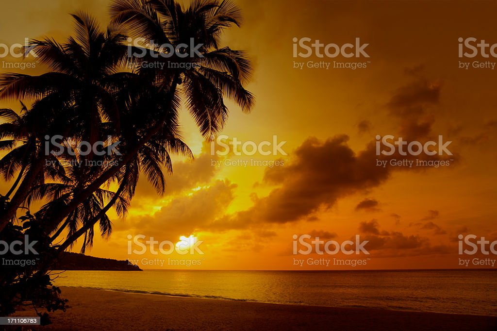 sunset at a tropical beach in the Caribbean royalty-free stock photo