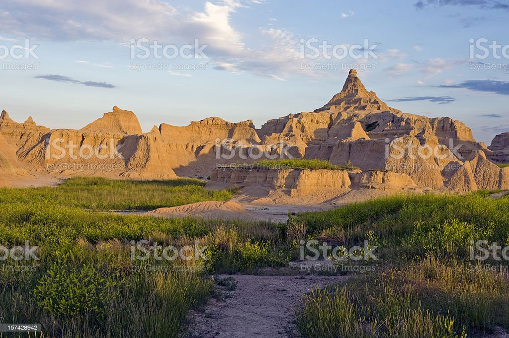 Sunset at Badlands National Park with wildflowers stock photo