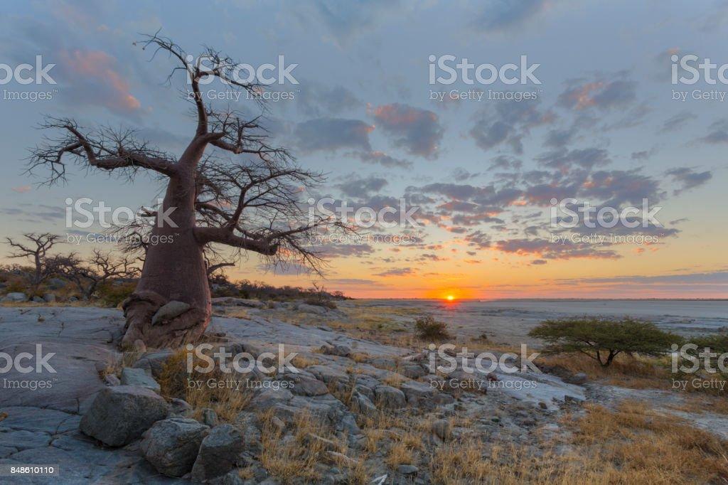 Sunset at Kubu Island stock photo