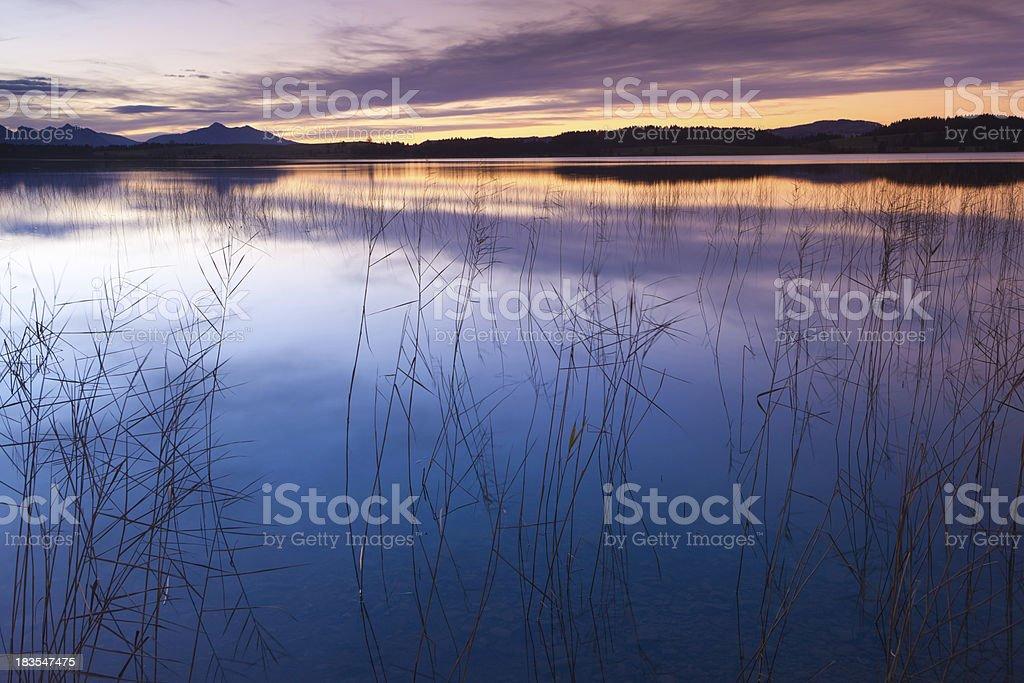 sunset at lake bannwaldsee in bavaria - germany stock photo